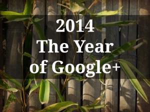 bamboo wall with plants, 2014 The Year of Google+